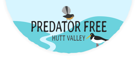 Predator Free Hutt Valley
